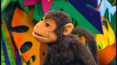 Episode 311: Spider Monkey & Lemur