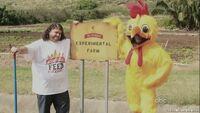 6x12 Chicken 2.jpg