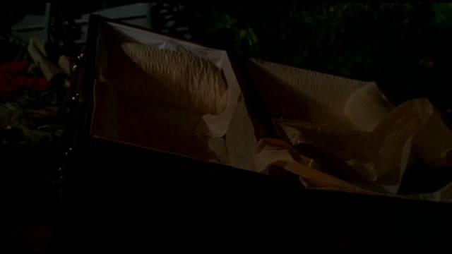 Cercueil de Christian Shephard