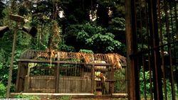 3x02 Sawyers Käfig.jpg