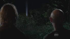 De groep aanschouwt het licht van de Zwaan.jpg