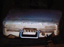 Halliburton Case.jpg