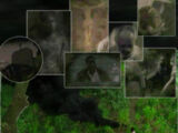 Monster/Theories