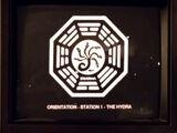 Hydra-Orientierungsfilm