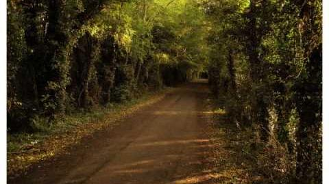 Hobbit Walking Song - The Road Goes Ever On