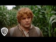 The Lord of the Rings- The Fellowship of the Ring - Pippin - Warner Bros