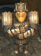 The Lord of the Rings Online - Náin (son of Grór)
