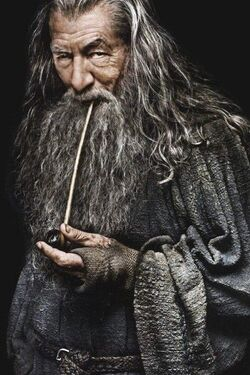 Gandalf the Grey profile.jpg