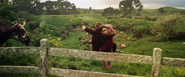 The Hobbit-An Unexpected Journey-Shire1