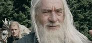 Gandalf Schattenfell