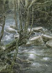 Waldfluss.jpg