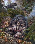 Wolfs.1