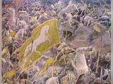 Battle of the Pelennor Fields