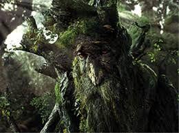 """Ent Drzewiec w trylogii <i><!--LINK'"""" 0:0--></i> <!--LINK'"""" 0:1-->"""