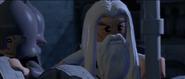 Lego lotr gandalf at minas tirith