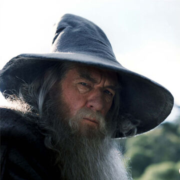 Gandalf the Grey.jpg