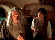 Фродо расспрашивает Гэндальфа о Кольце в 3001 году Третьей Эпохи