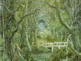 Woodland Realm