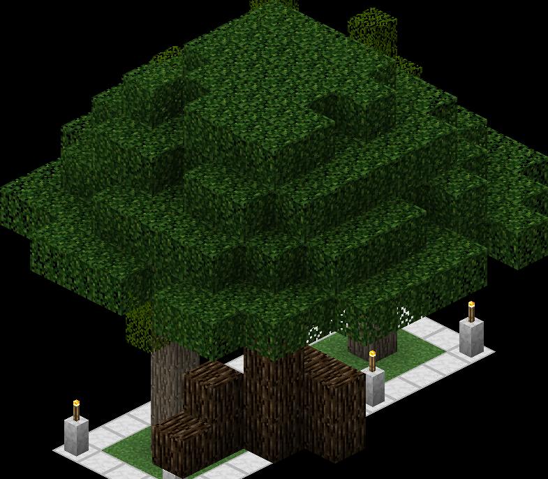 Mirk-oak Tree