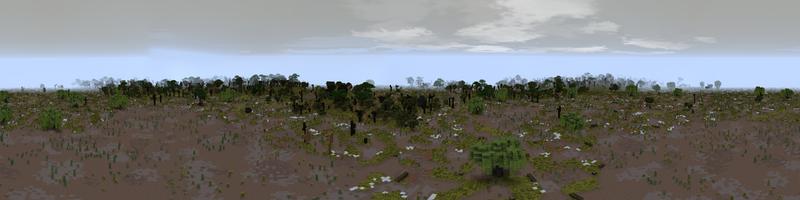Panorama Nurn Marshes