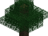 Lebethron Tree