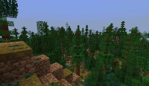Taiga PB29.6 - forest