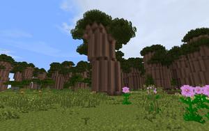 BaobabForest