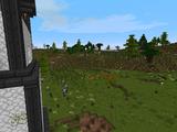 Blackroot Vale