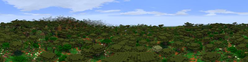 Panorama Gulf Forest