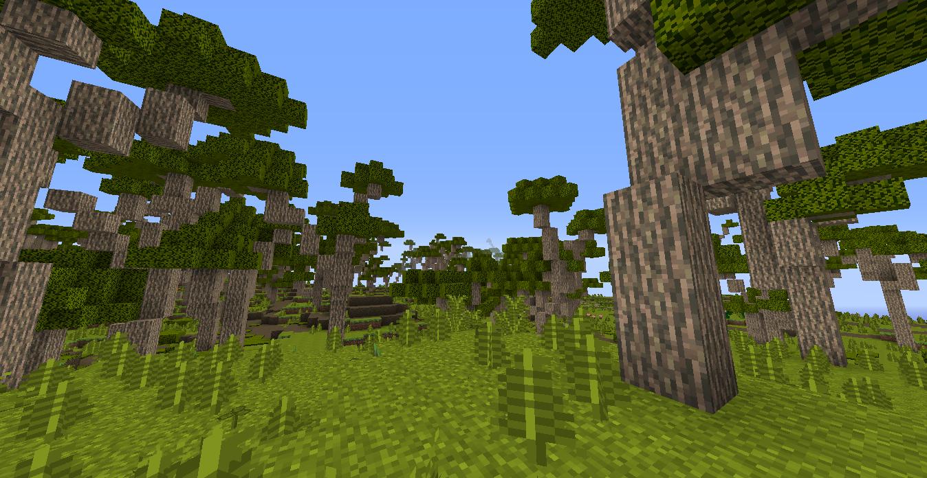 Kanuka Forest