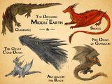 LOTR Dragon