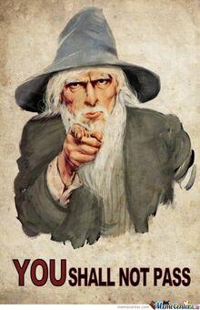 Gandalf-told-you o 342674.jpg