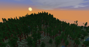 DunlandPineForestedHills