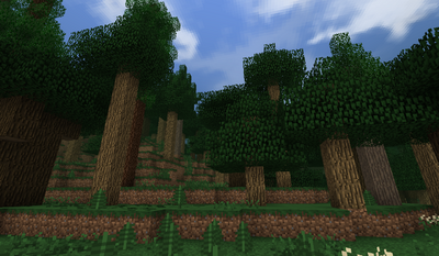 Old Forest B27.2 - Tall and Taller Oaks.png