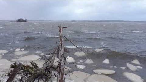 January 12018 windstorm from Oyster Pond, Nova Scotia, part 2