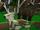 Wood-elven Elk Armour