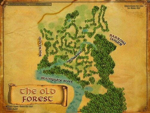 Old ForestMAPP