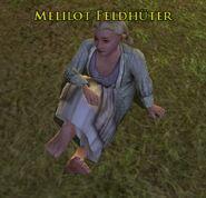 Melilot Feldhüter