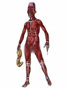 Skinlessone2