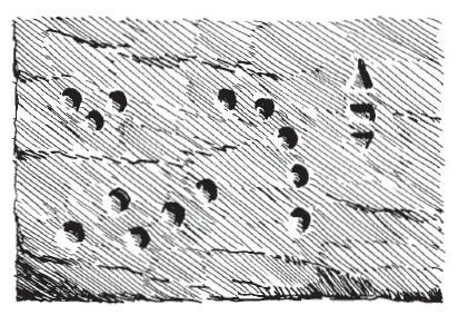 Fragmentos de G'harne