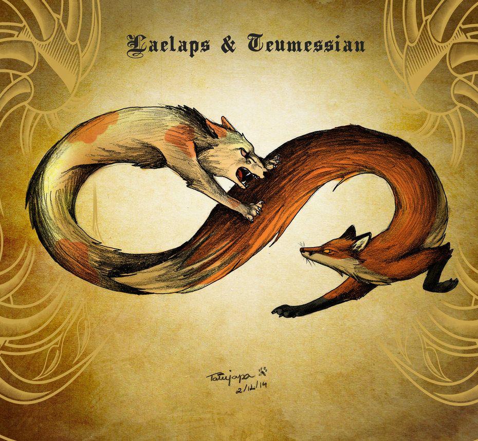 Teumessian Fox