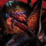 Cthulhu (Demonbane).jpg