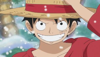 Monkey D. Luffy | Love Interest Wiki | Fandom