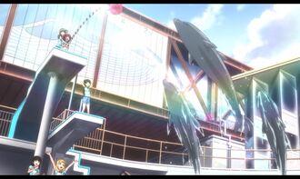 Aquarium-21.jpg