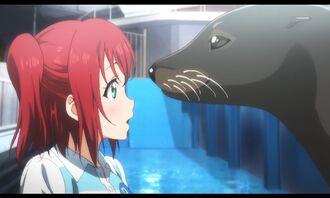 Aquarium-19.jpg