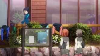 Anime-07.jpg