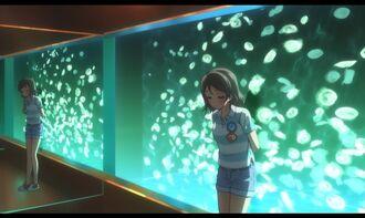 Aquarium-06.jpg