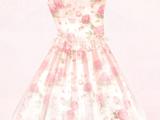Nikki's Dress