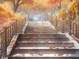 Autumn Maple Stairway