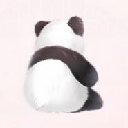 Thinker Panda